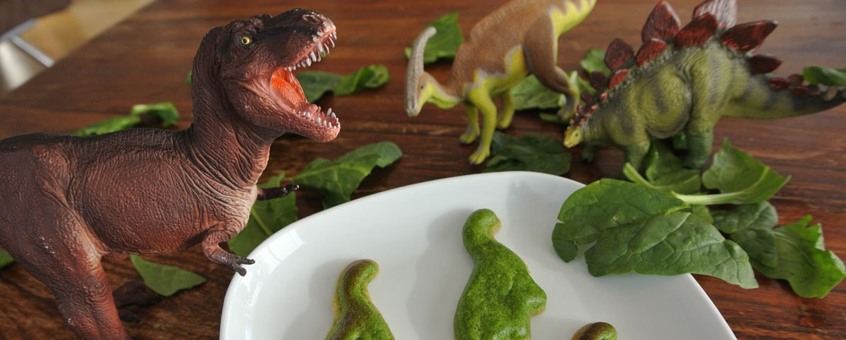Insights 12 Food Skills Dinosaurs Extinct