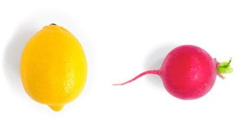lemon and radish