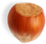 Food Nut